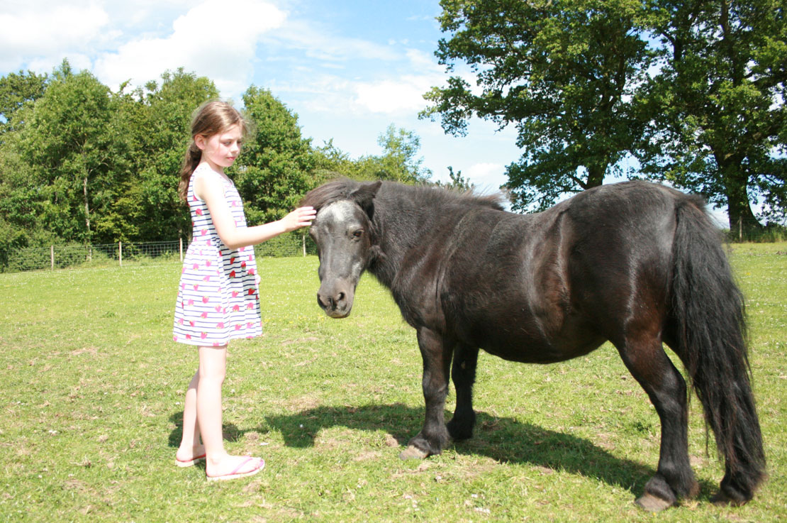 Girl Petting Pony whilst Glamping